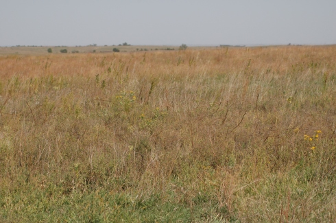 The area is classified as loess, mixed-grass prairie.